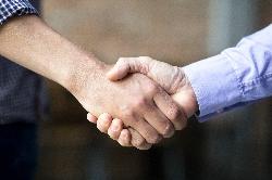 AP-Net Partnerstwo